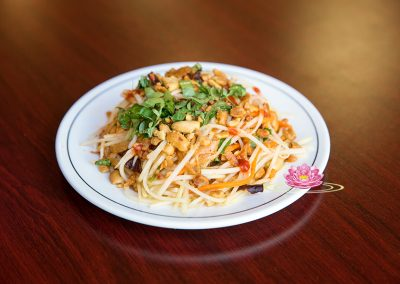 A14. Vegetarian papaya salad